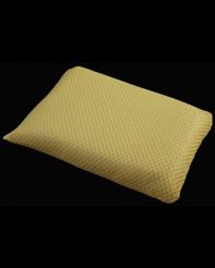 Large Bug Sponge